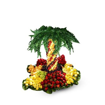 Zeus Pineapple Tree – 3ft